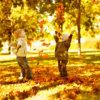 落ち葉で遊ぼう!秋ならではの遊び方大全集